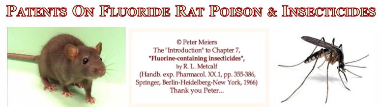 title+ rat Mozy & credit sss