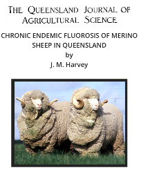 F. Merino Sheep Qld.