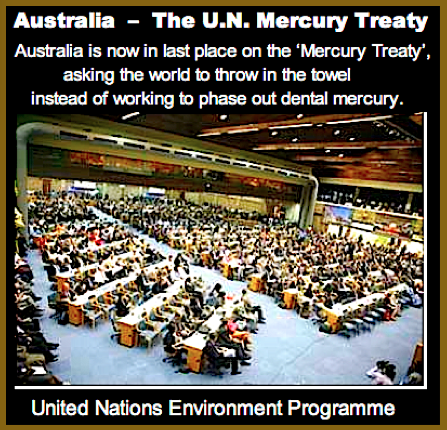 UN Mercury Treaty ff