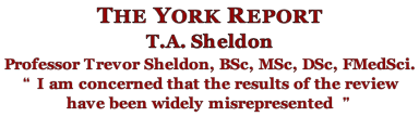 The York Report s