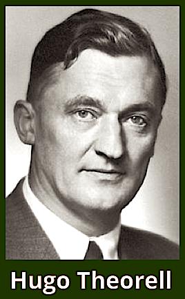 Hugo Theorell