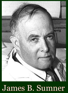 James B. Sumner ff