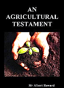 An Agricultural Testament-image