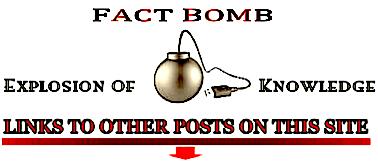 'Fact bomb' +