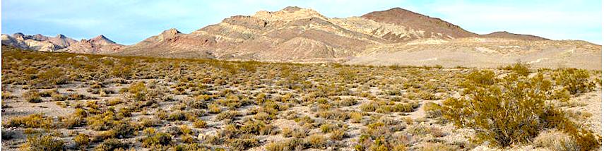 Nevada desert m