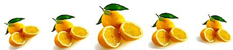 row of cut lemons