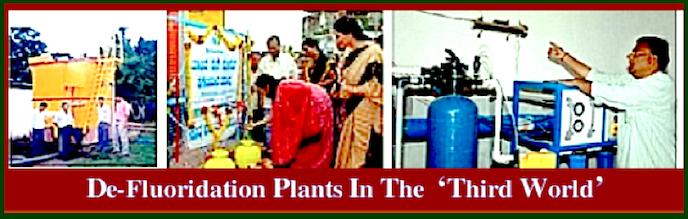 DE-F.Plants-3rd-W-ff