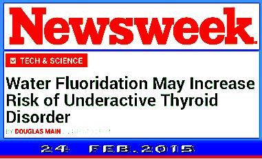 Newsweek 24 Feb.2015