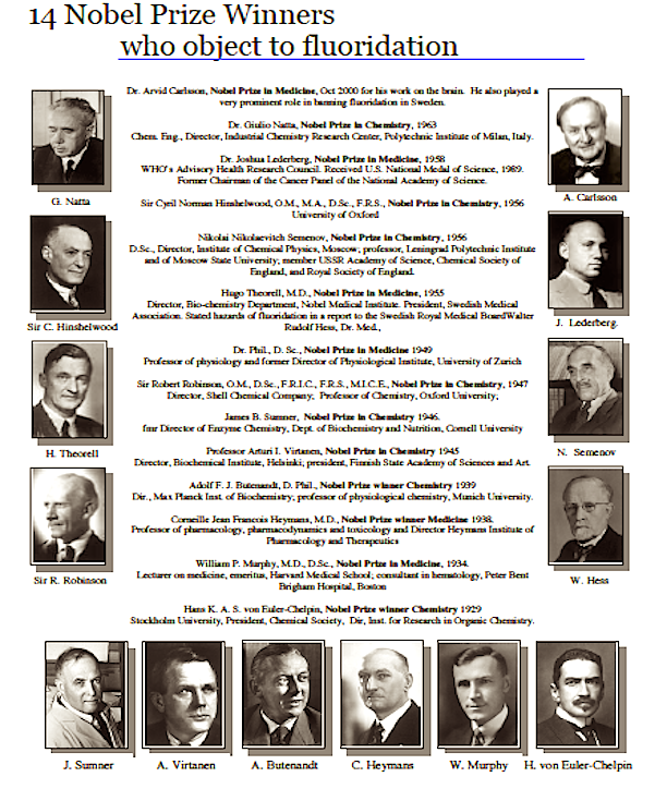 14-nobel-winners
