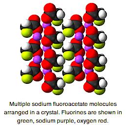 1080 molecue